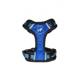 cat harness blue