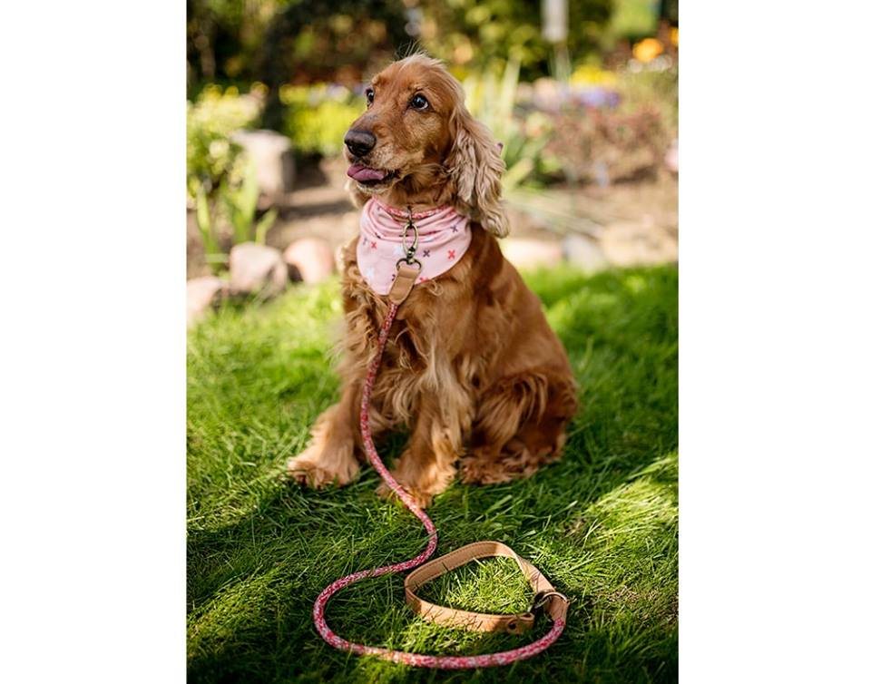LEATHER & ROPE LEASH HAFEN RED