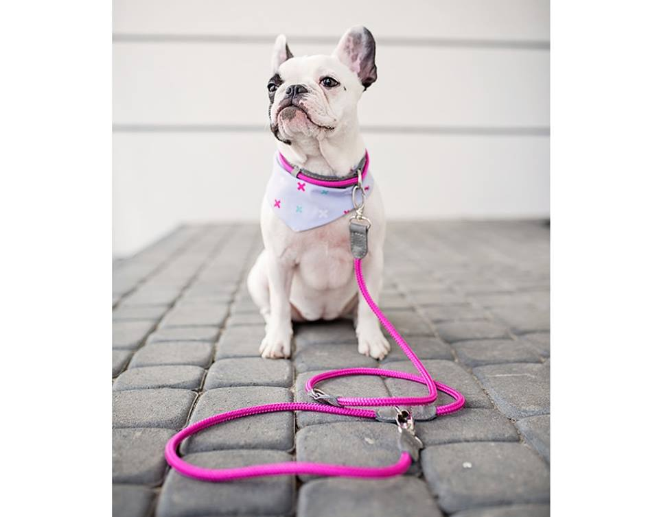 ADJUSTABLE LEASH HAFEN PINK