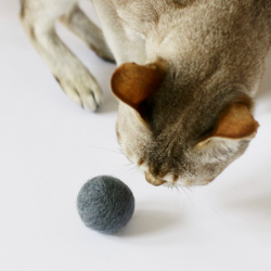 wool ball for the cat x 2pcs.