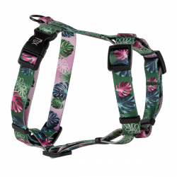GUARD HARNESS GREEN MONSTERA