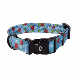 dog collar forget-me-nots / SINGLE