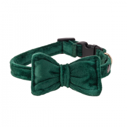 Dog Collar Mr. Fox - forest moss